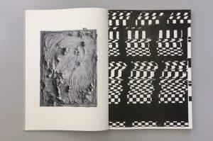 Sabrina Fritsch artist book Risoprint